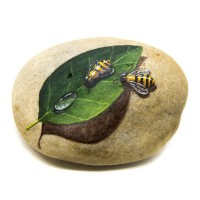 Pedra Pintada Abelha e Folha