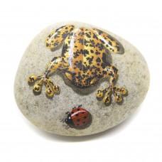 Pedra Pintada Perereca Amarela e Joaninha
