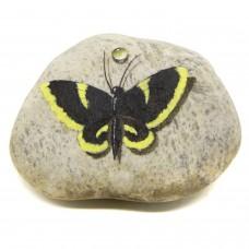 Pedra Pintada Borboleta Preta e Amarela