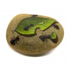 Pedra Pintada Formiga e Folha