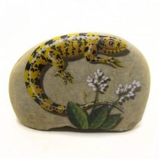 Pedra Pintada Lagarto