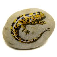 Pedra Pintada Lagarto Amarelo