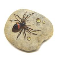 Pedra Pintada Aranha e Gota