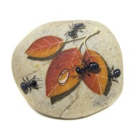 Pedra Pintada Formiga e Folha Seca