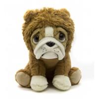 Bulldog Leão