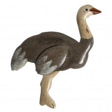 Imã Madeira Avestruz