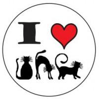 Botton Eu Amo Gato